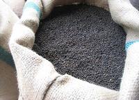 Vietnam Black Pepper Wholesale