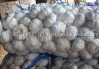 Good quality 100% pure and natural garlic