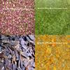 fine mixed herbal tea