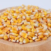 Dry corn for animal feed