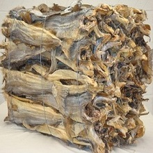 Grade A Dried StockFish / Frozen Stock Fish for sale