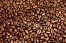 GREEN COFFEE BEANS, ARABICA COFFEE BEANS, ROBUSTA COFFEE BEANS