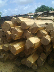 Teak rough square logs from Africa