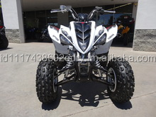 Used 2014 Raptor 350