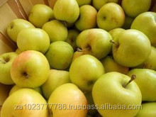 NEWLY Fresh Ginger Gold Apple Hot sales