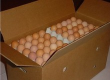 FROZEN CHICKEN EGGS