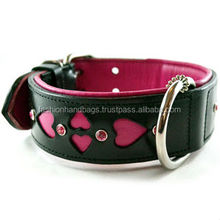 Dog Leather Collar & Leashes