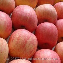 Fresh Apple of Fruit new fruits high quality