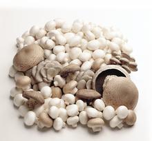 High Vitamin D Mushroom Powder 5000 IU/g