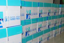 Copy Paper Office School Supplies Paper
