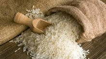 Basmati Rice/Non Basmati Rice/Long Grain White Rice/1121 Basmati Rice/Broken Rice