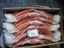 Popular y la alta calidad de la nieve patas de cangrejo cangrejo con hokkaido made in japón