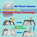 Fácil de usar oil & graxa remover