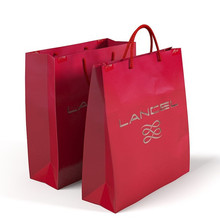 Paper Carry Bags Printing Service | Luxury Hand Paper Carrying Bag