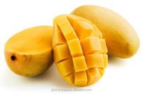 Fresh Mangos for sale.