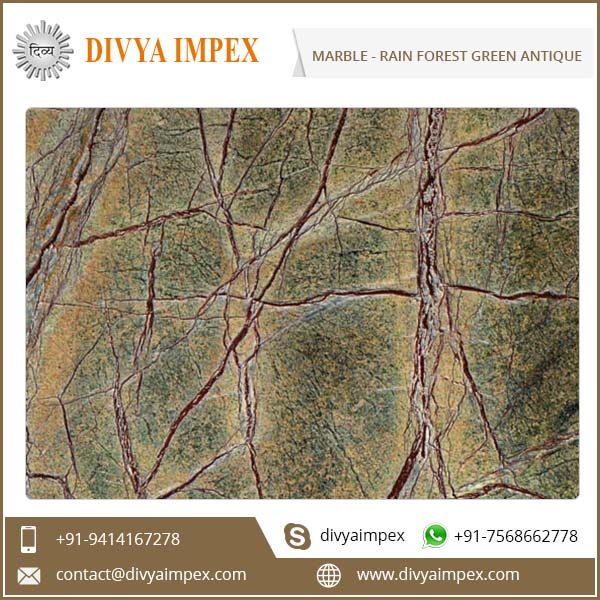 divya-impex_indian-marble_rain-forest-green-antique.jpg