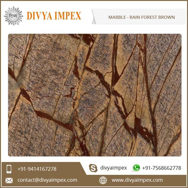divya-impex_indian-marble_rain-forest-brown.jpg