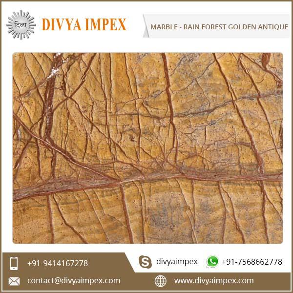 divya-impex_indian-marble_rain-forest-golden-antique.jpg