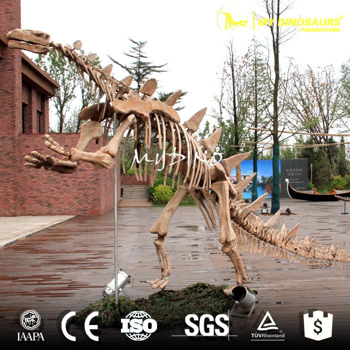 simulation  fossil.jpg